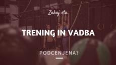 trening in vadba