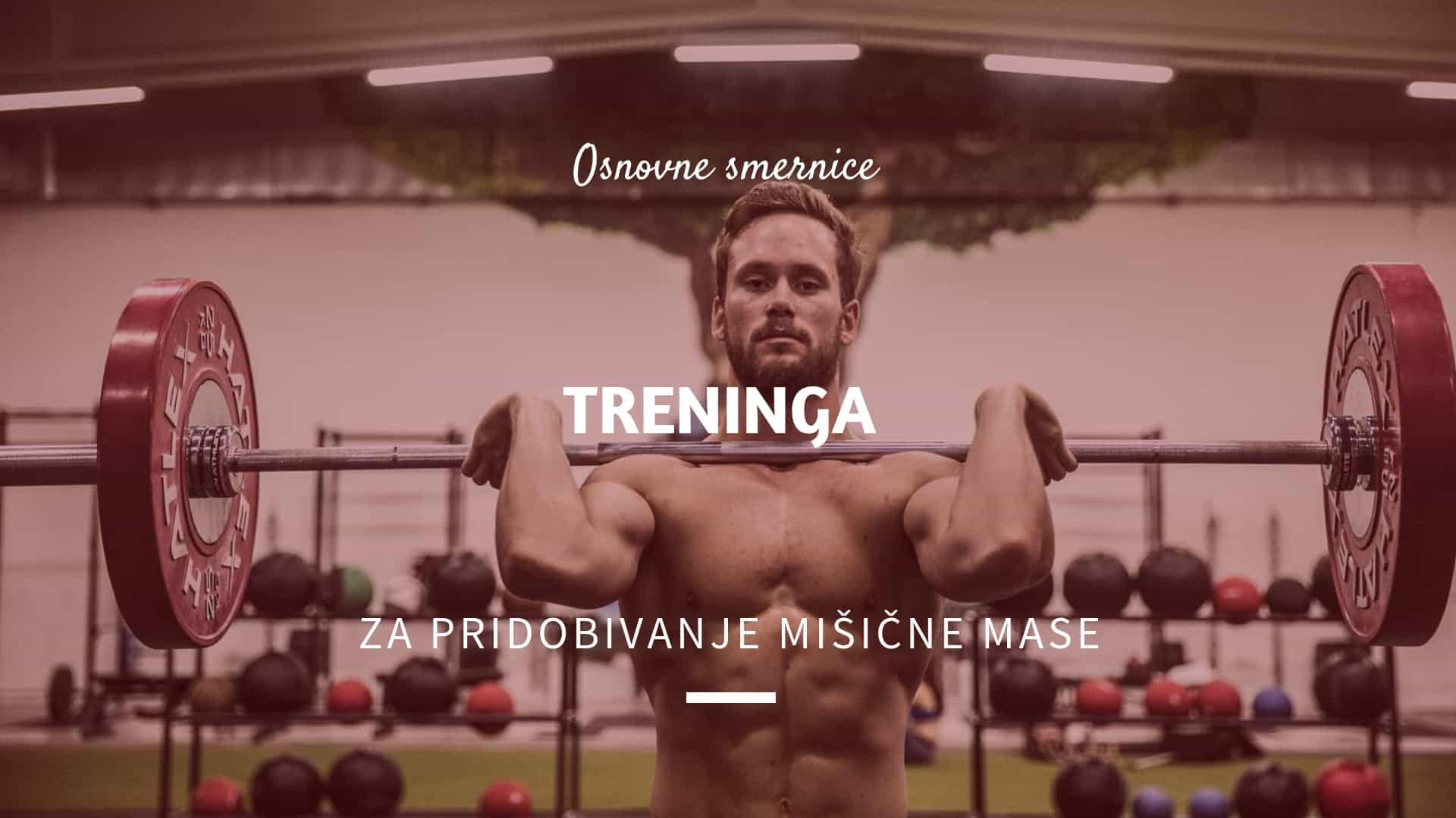 Osnovne smernice treninga za pridobivanje mišične mase