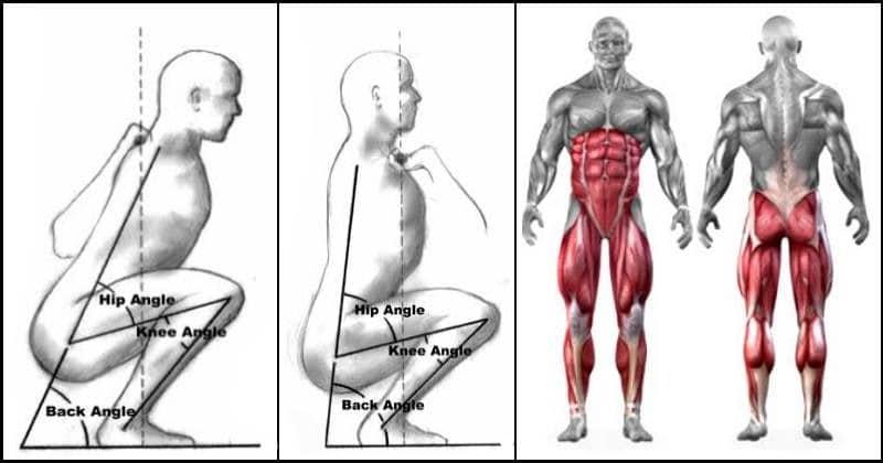 trening nog in zadnjice biomehanika počepa