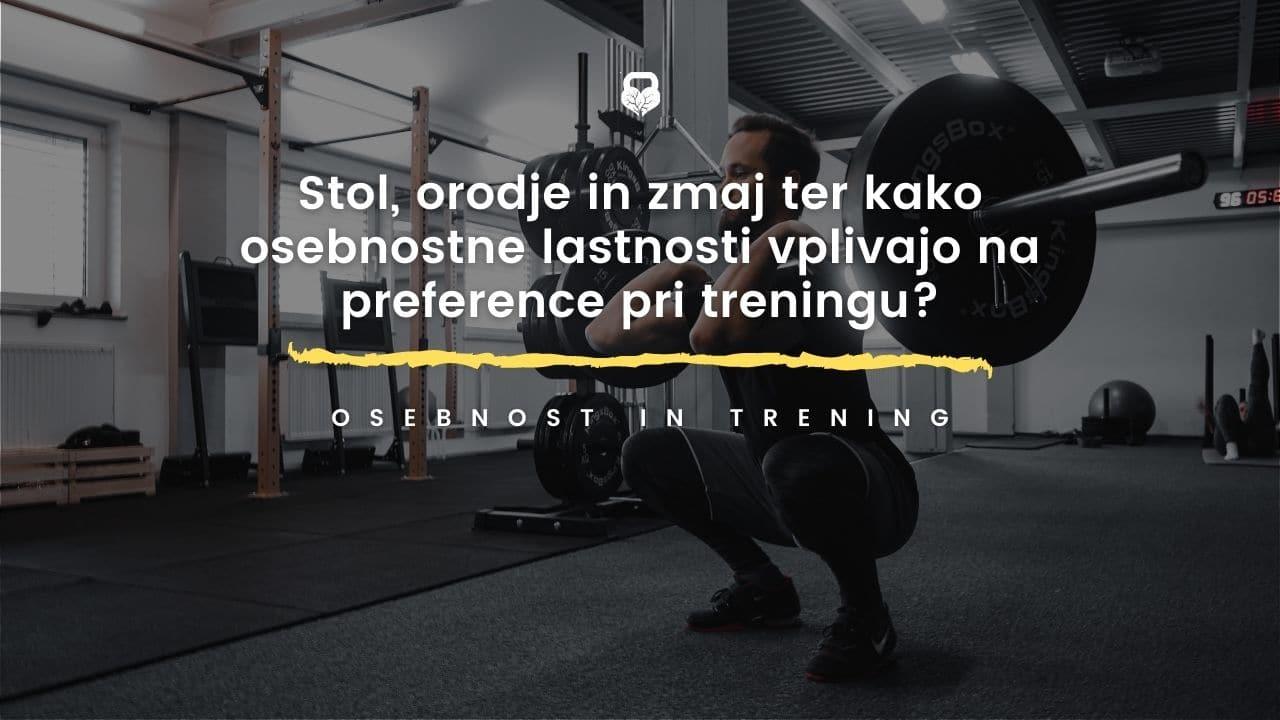 Read more about the article Stol, orodje, zmaj in kako osebnostne lastnosti vplivajo na preference pri treningu?